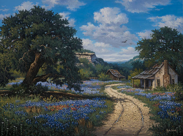 Texas Bluebonnets Paintings For Sale