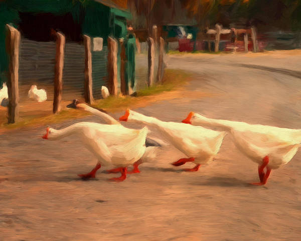 Geese Print featuring the painting Goose Crossing by Michael Pickett