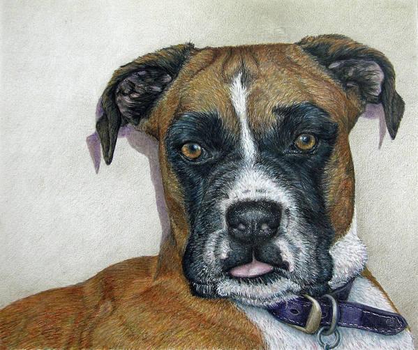 Fuqua - Artwork Print featuring the drawing Lennox by Beverly Fuqua