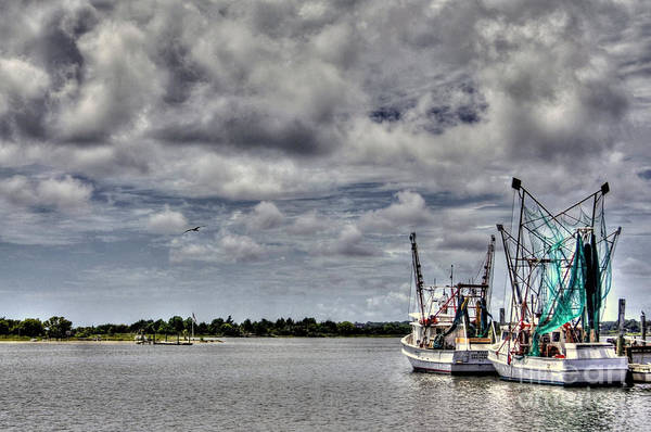 Swansboro North Carolina Print featuring the photograph Little Shrimpers  by Benanne Stiens