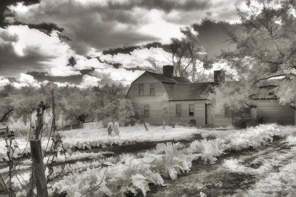 Farm Print featuring the photograph Watercolor In Black And White by Joann Vitali