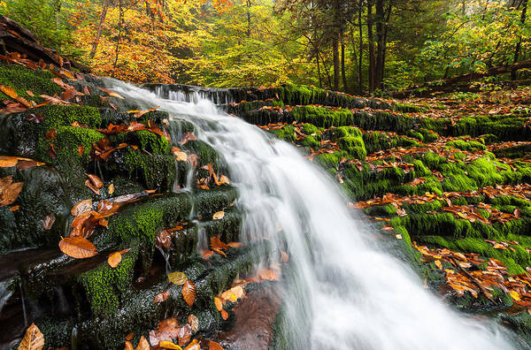 Allegheny Mountains Print featuring the photograph Pennsylvania Autumn Ricketts Glen State Park Waterfall by Mark VanDyke