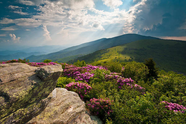 Appalachian Trail Print featuring the photograph Roan Mountain From Appalachian Trail Near Jane's Bald by Dave Allen