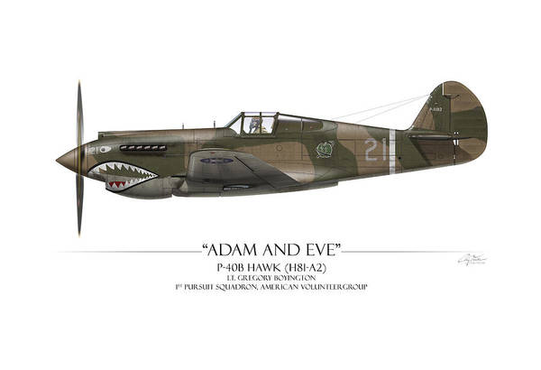 Aviation Print featuring the painting Pappy Boyington P-40 Warhawk - White Background by Craig Tinder