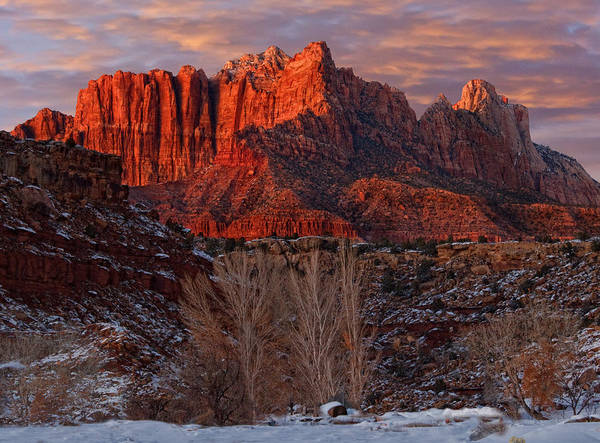 Zion National Park Print featuring the photograph Zion National Park Utah by Utah Images