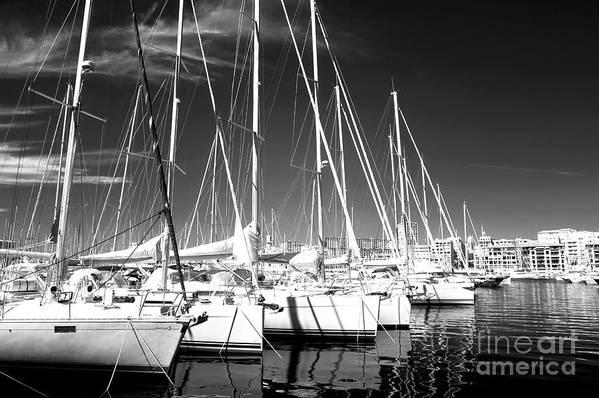 Sailboats Docked Print featuring the photograph Sailboats Docked by John Rizzuto