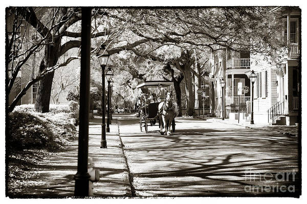 Carriage Ride In Charleston Print featuring the photograph Carriage Ride In Charleston by John Rizzuto