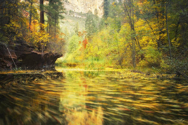 Autumn Print featuring the photograph Parade Of Autumn by Peter Coskun