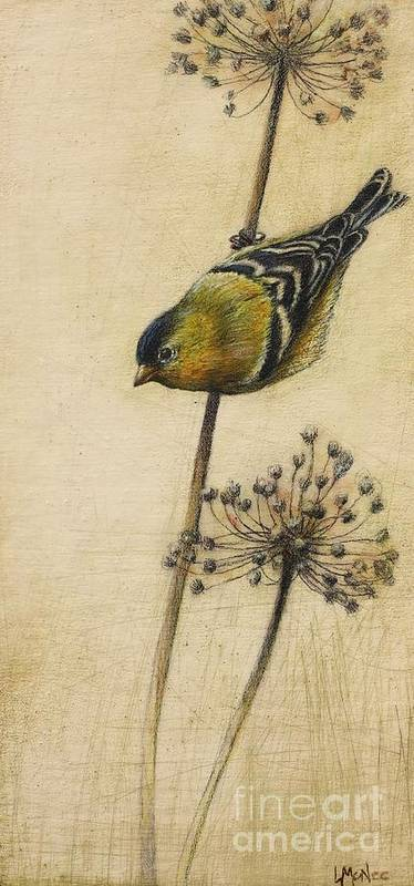 Goldfinch Print featuring the drawing Goldfinch by Lori McNee
