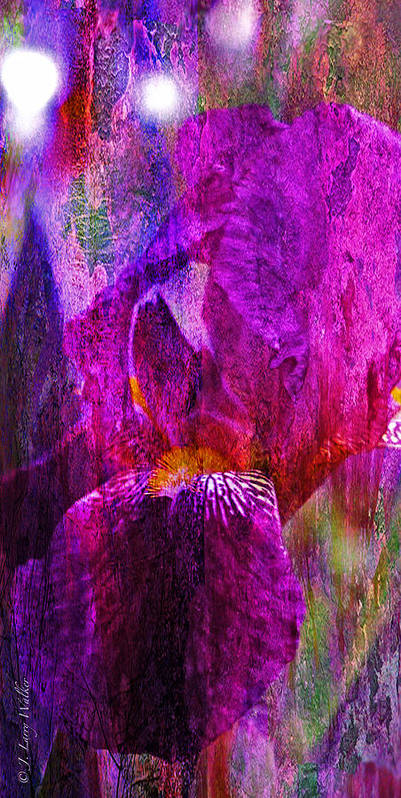 J Larry Walker Print featuring the photograph Iris Abstract by J Larry Walker