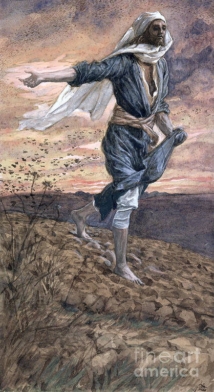 Print featuring the painting The Sower by Tissot