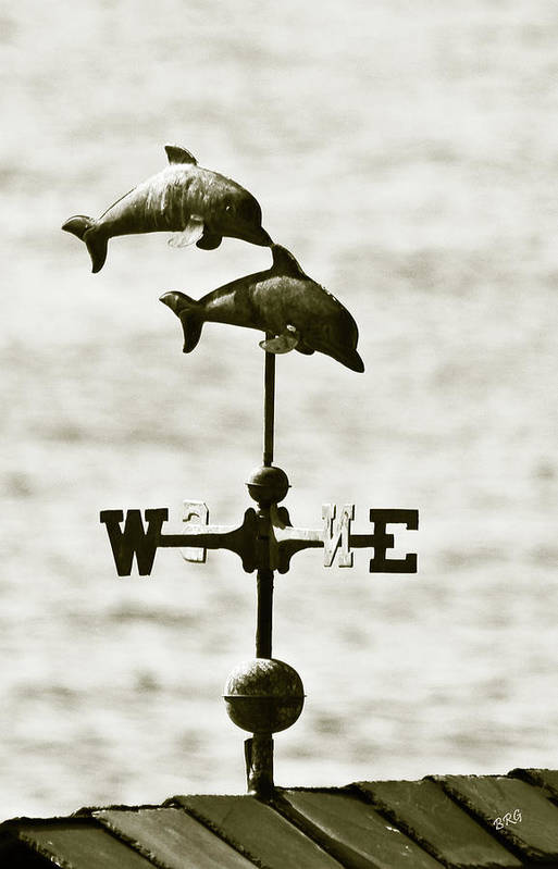 Dolphins Print featuring the photograph Dolphins Weathervane In Sepia by Ben and Raisa Gertsberg