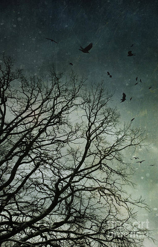 Atmosphere Print featuring the photograph Flock Of Birds Flying Over Bare Wintery Trees by Sandra Cunningham