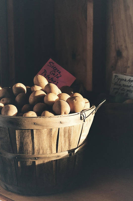 Potatoes Print featuring the photograph Sierra Gold by Caitlyn Grasso