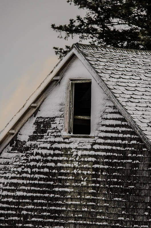 Barn Print featuring the photograph The Crows Nest by Susan Capuano