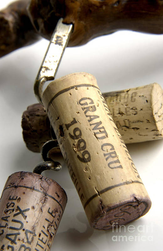 Cork Print featuring the photograph Corks Of French Wine by Bernard Jaubert
