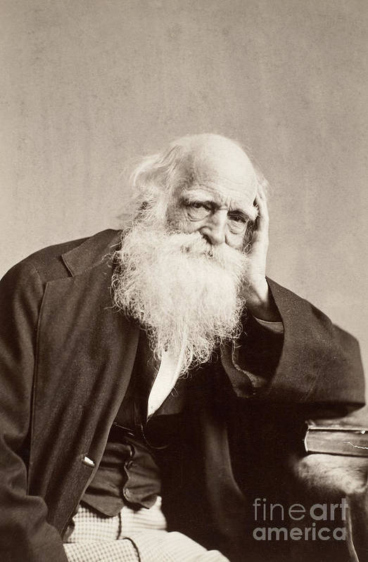 19th Century Print featuring the photograph William Cullen Bryant by Granger