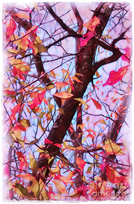 Fall Print featuring the photograph Crisp Autumn Day by Judi Bagwell