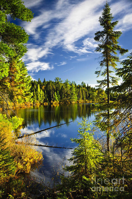 Lake Print featuring the photograph Forest And Sky Reflecting In Lake by Elena Elisseeva
