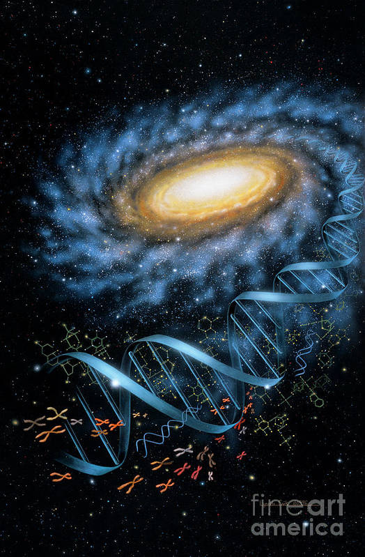 Lynette Cook Print featuring the painting Dna Galaxy by Lynette Cook
