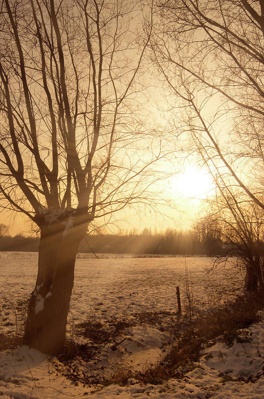 Sunset Print featuring the photograph Winter Sunset by Wim Lanclus