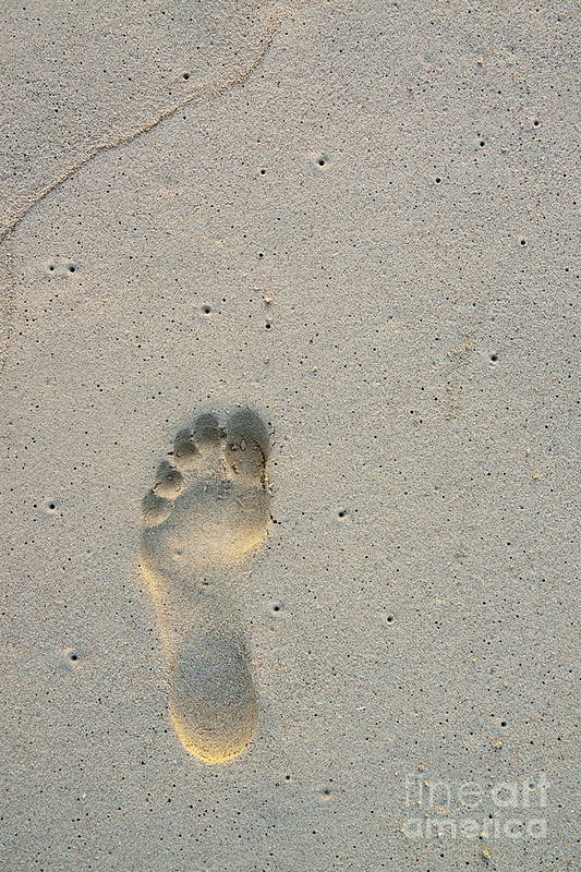 Simplicity Print featuring the photograph Footprint In Sand On Beach by Sami Sarkis