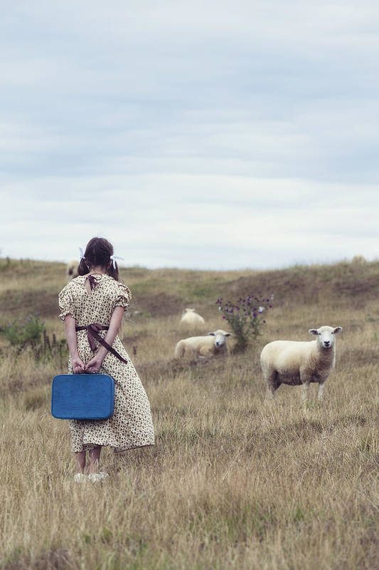 Girl Print featuring the photograph Girl With Sheeps by Joana Kruse