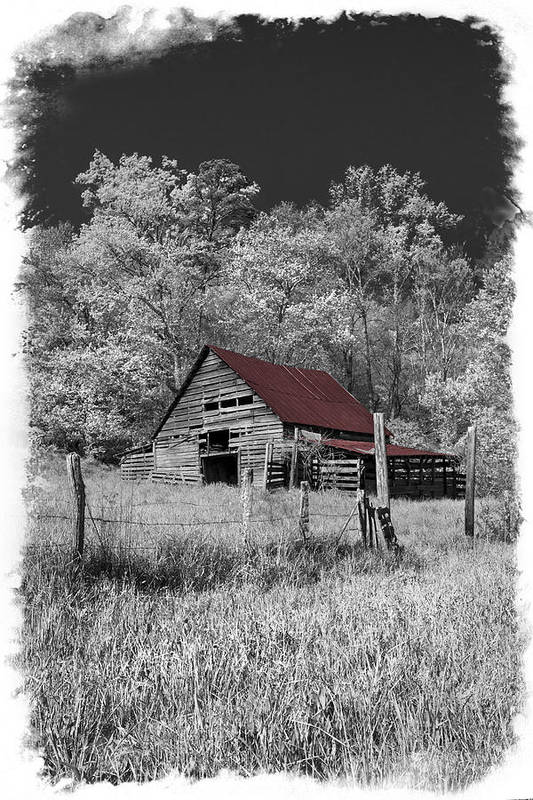 Appalachia Print featuring the photograph Big Red by Debra and Dave Vanderlaan