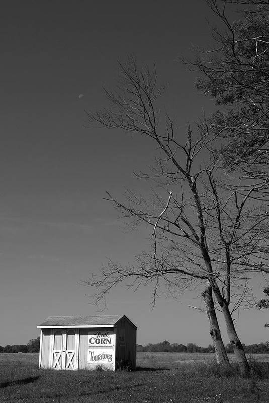 New Jersey Print featuring the photograph Bear Tavern Road by Steven Richman