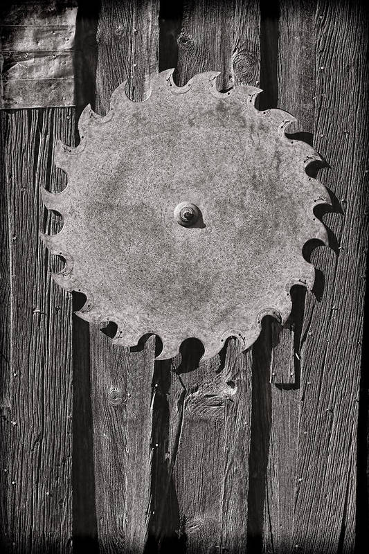 Circular Print featuring the photograph Circular by Kelley King