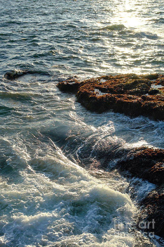 Maine Print featuring the photograph Crashing Waves by Olivier Le Queinec