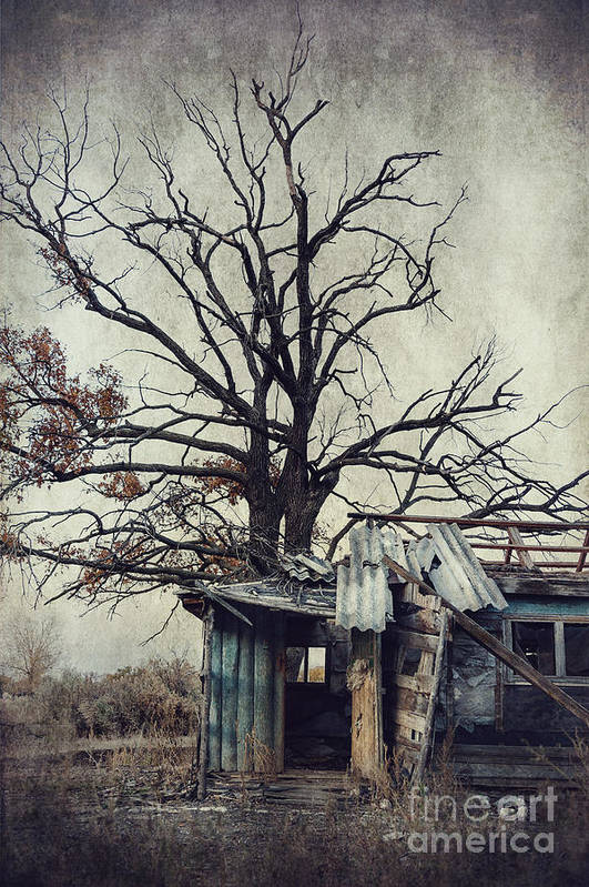 Abandoned Print featuring the photograph Decay Barn by Svetlana Sewell