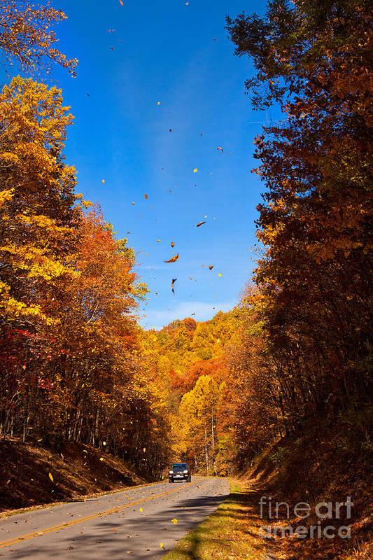 Blue Ridge Parkway Print featuring the photograph Falling Fall Leaves - Blue Ridge Parkway by Dan Carmichael