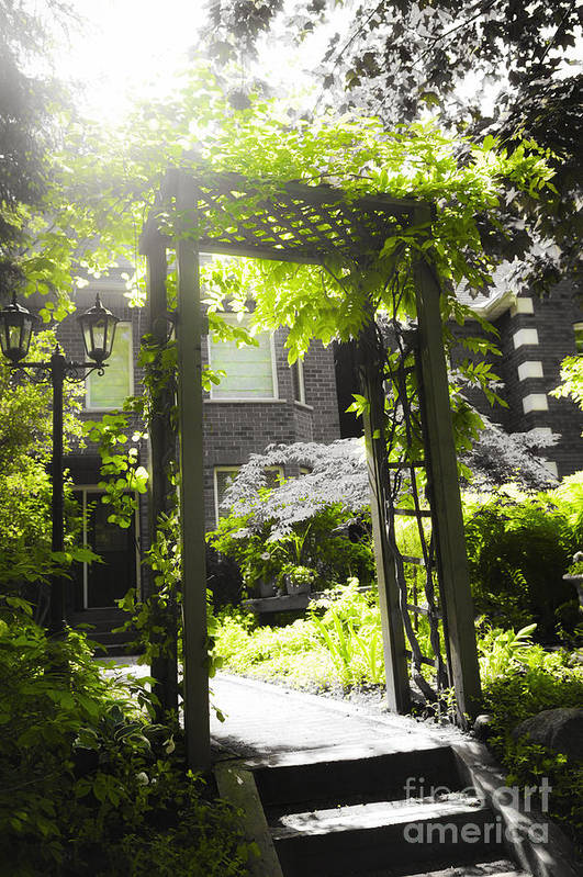 Arbor Print featuring the photograph Garden Arbor In Sunlight by Elena Elisseeva