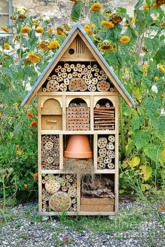 Craftsman Print featuring the photograph Insect Hotel by Olivier Le Queinec