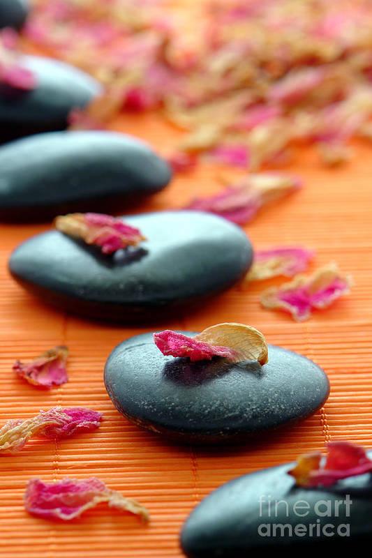 Zen Print featuring the photograph Meditation Zen Path by Olivier Le Queinec