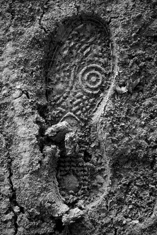 Mud Print featuring the photograph Mission To Mud by Antonio Castillo