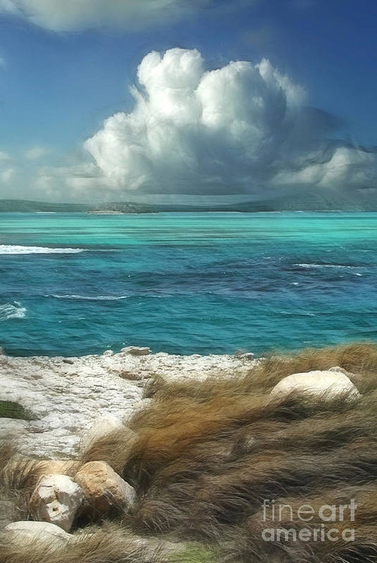 Antigua Print featuring the painting Nonsuch Bay Antigua by John Edwards