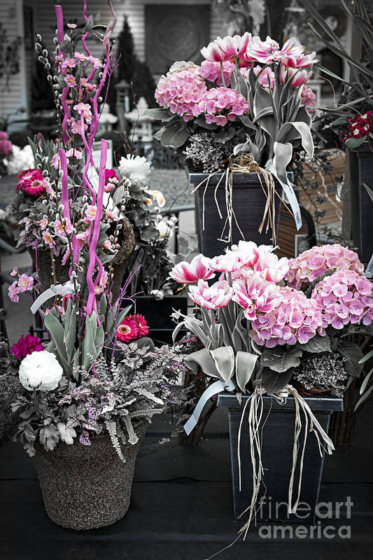 Flower Print featuring the photograph Pink Flower Arrangements by Elena Elisseeva