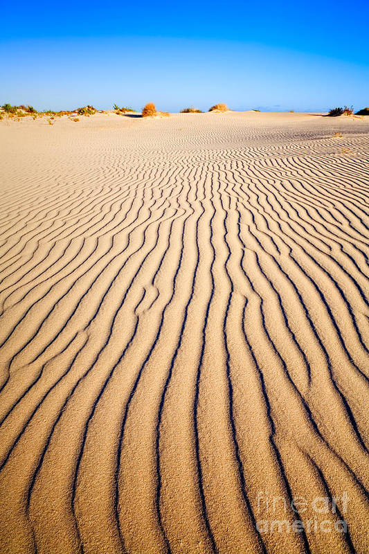 Sand Print featuring the photograph Sand Dunes At Eucla by Colin and Linda McKie