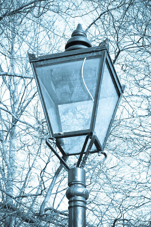 Antique Lamp Print featuring the photograph Street Lamp by Tom Gowanlock