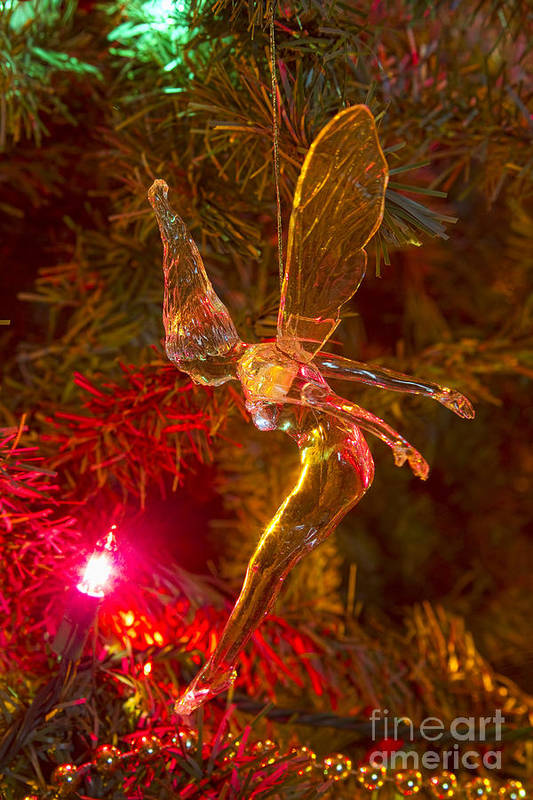 Tink Print featuring the photograph Tinker Bell Christmas Tree Landing by James BO Insogna