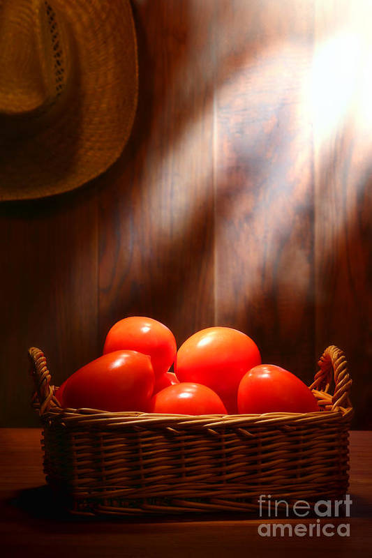 Tomatoes Print featuring the photograph Tomatoes At An Old Farm Stand by Olivier Le Queinec