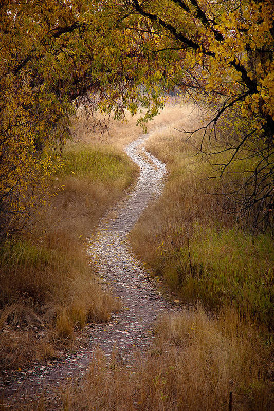 Fall Print featuring the photograph Trail Of Dreams by Michael Van Beber