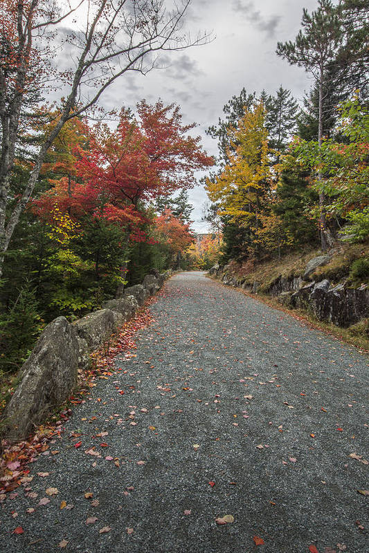 Maine Print featuring the photograph Where I Go by Jon Glaser