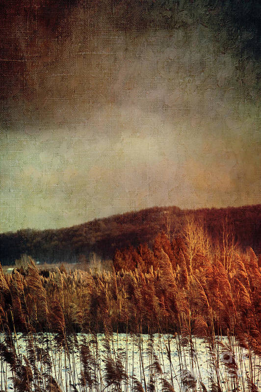 Abandoned Print featuring the photograph Frosty Field In Late Winter Afternoon by Sandra Cunningham