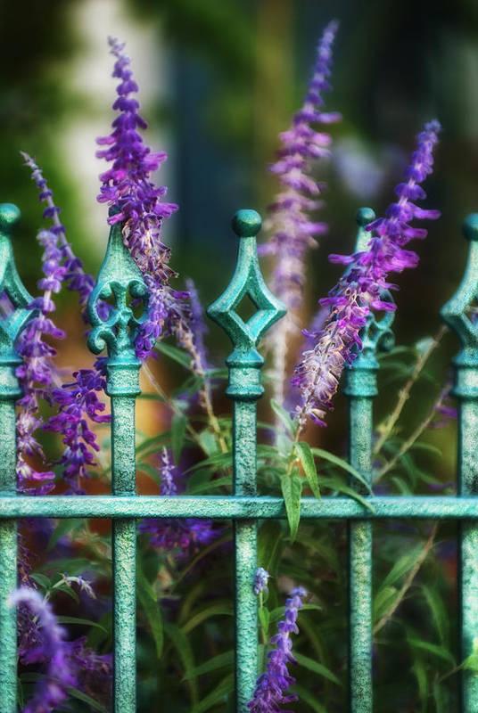 Lavender Print featuring the photograph Secret Garden by Brenda Bryant