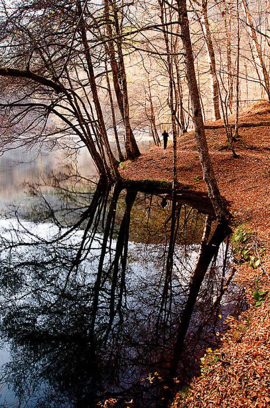 Autumn Print featuring the photograph Autumn - 4 by Okan YILMAZ