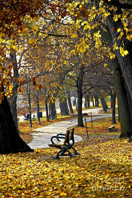 Park Print featuring the photograph Autumn Park In Toronto by Elena Elisseeva