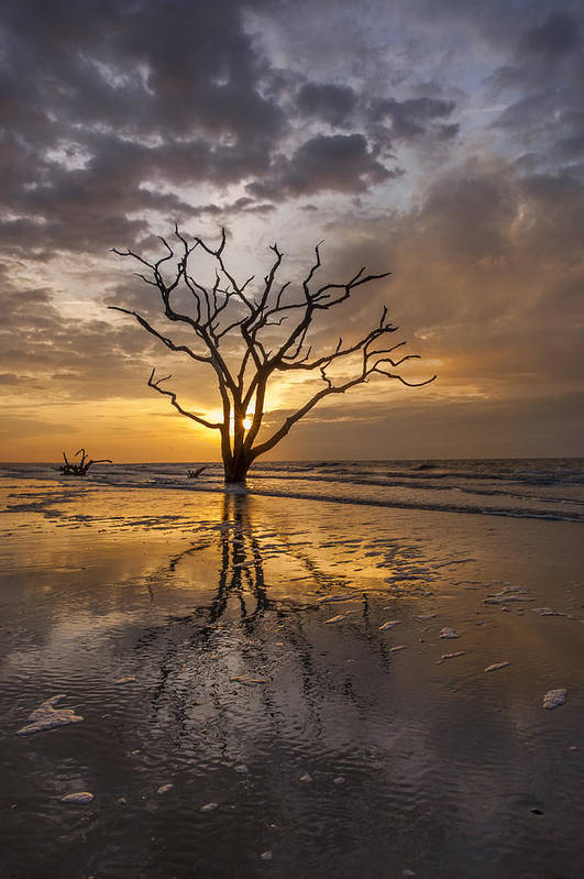 Botany Bay Print featuring the photograph Boneyard Sunrise by Joseph Rossbach